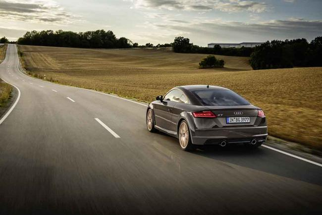 Exterieur_audi-tt-bronze-selection_5