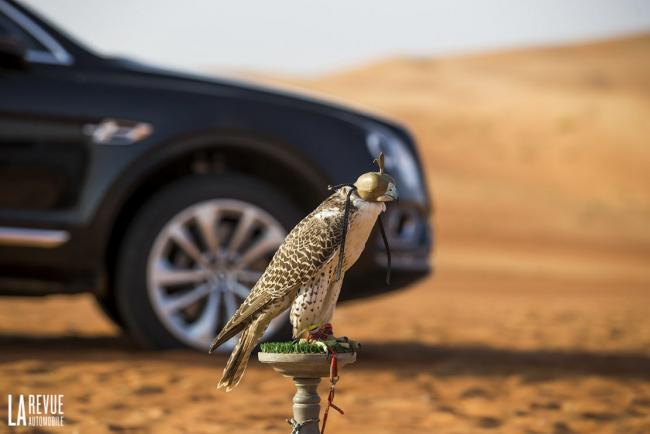 Exterieur_Bentley-Bentayga-Falconry_1