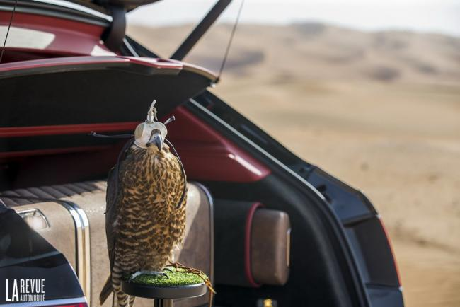 Interieur_Bentley-Bentayga-Falconry_23