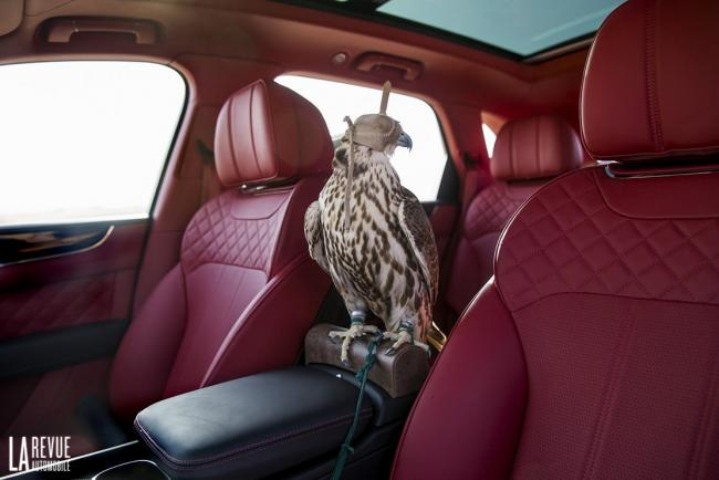 Interieur_Bentley-Bentayga-Falconry_30