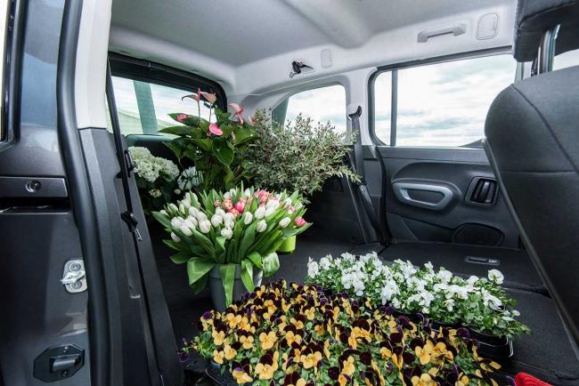Interieur_toyota-proace-city-verso_4