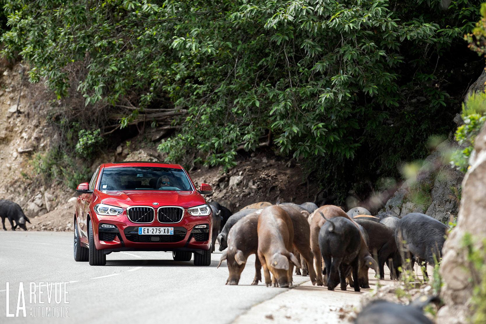 BMW X4 20d M Sport