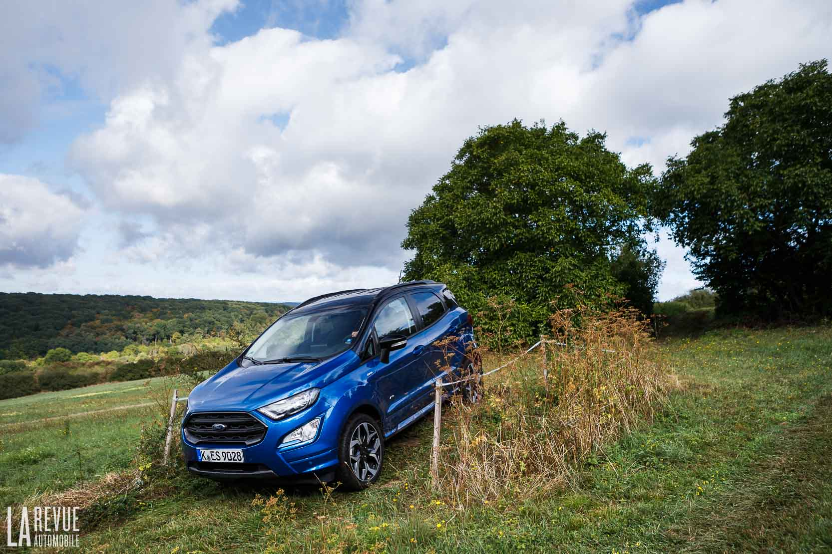Ford Fiesta-Active-SUV