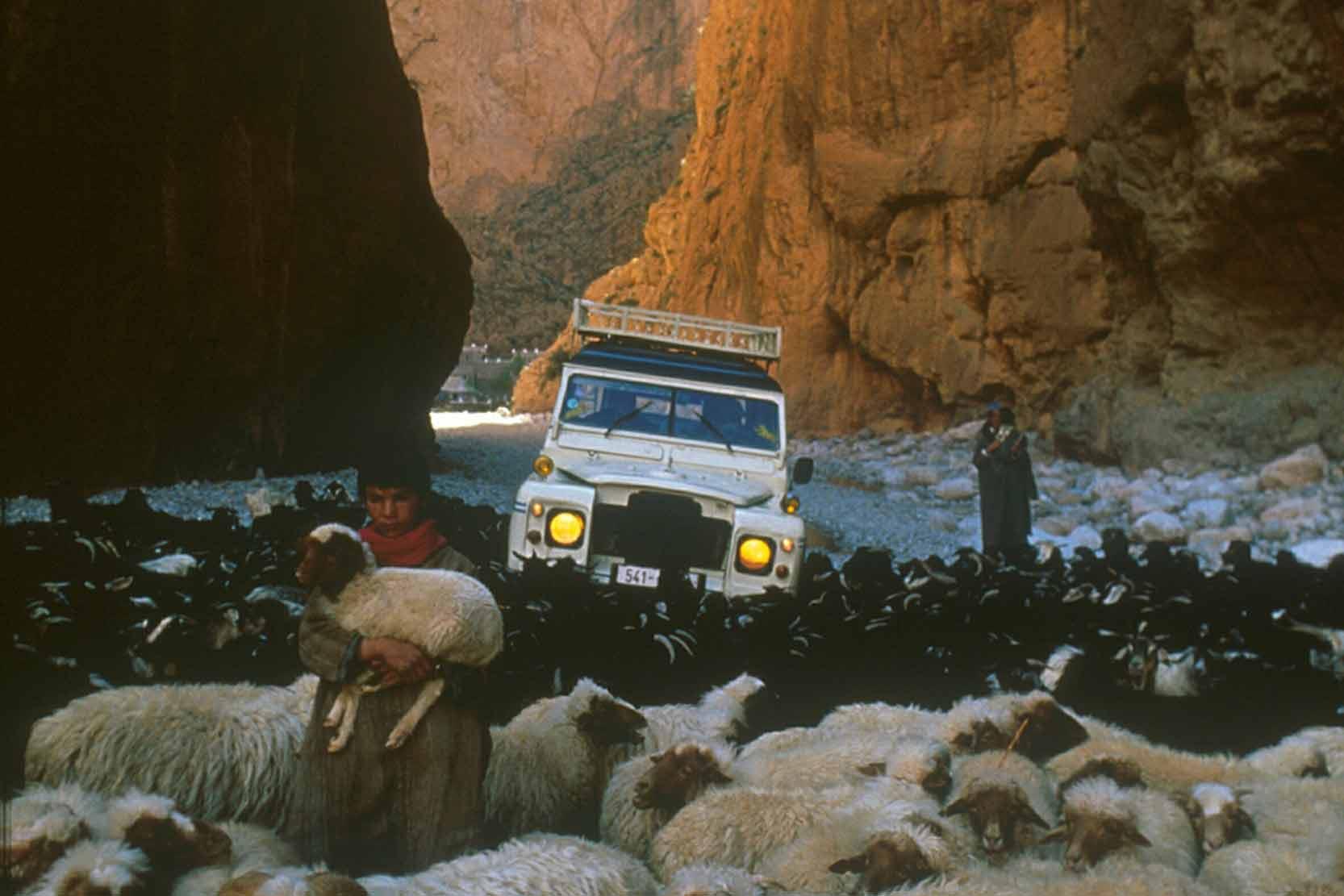 Le Land Rover Defender passe, la où le Touareg s'arrête